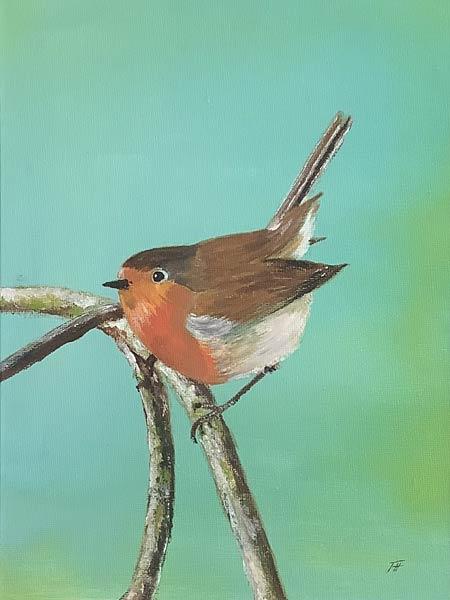 P115 Robin Redbreast